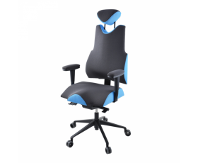 Zdravotní židle THERAPIA BODY XL PRO 4210 AX62/AX67