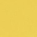 Koženka 036
